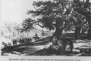 Древний крест, висящий на дереве на возвышенностях Сочи. Рисунок Д. С. Белля